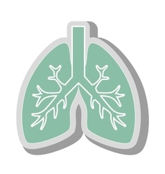 Lungs human anatomy icon vector