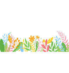 panorama banner colorful spring flowers vector image