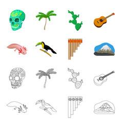 sampono mexican musical instrument a bird with a vector image