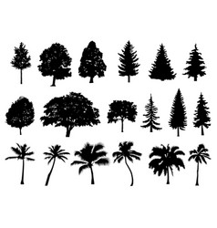 trees set silhouette coniferous forest isolated vector image