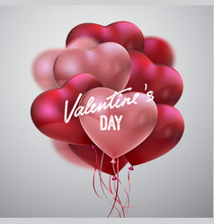 valentines day holiday sign vector image