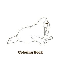Walrus cartoon coloring book vector