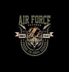 Air force veteran vector
