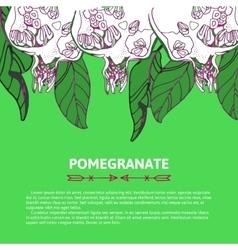 Pomegranate for postcard invitation vector image vector image