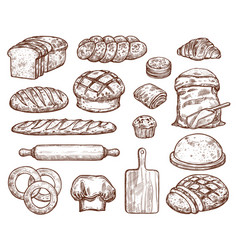 bakery set with a lot of types fresh bread vector image