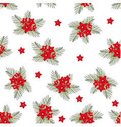 Cypress vine flower on christmas white background vector