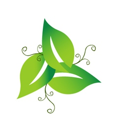 Green swirly leaves logo vector