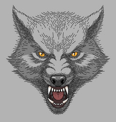 Head of angry wolf vector