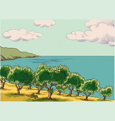 olive grove vector image