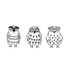 Set of three funny sketch owls vector image
