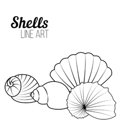 Shells line art vector