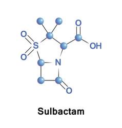 sulbactam beta-lactamase inhibitor vector image