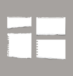 torn notebook paper pieces isolated on grey vector image