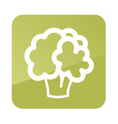 cauliflower outline icon vegetable vector image vector image