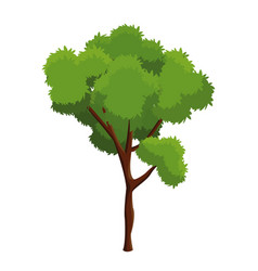 Cartoon tree plant natural forest vector