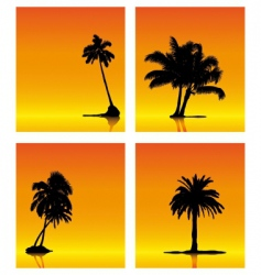 palm tree silhouettes on sunse vector image