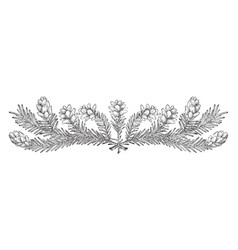 Pine cone border lower part has decorated with vector