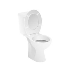 white toilet bowl vector image
