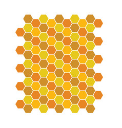 bee honeycomb pattern backgrounds vector image