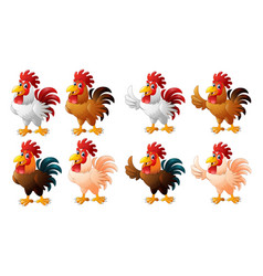 cartoon funny rooster collection set vector image