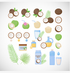 Coconut flat icon set vector