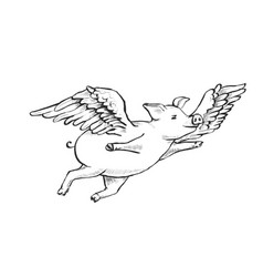 contour line drawing when pigs fly vector image