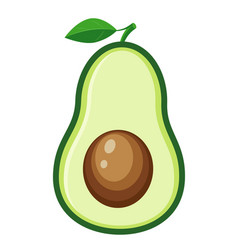 half avocado vector image