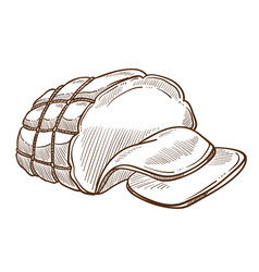 Ham or sausage in rope net meat food isolated vector
