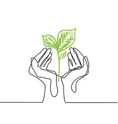 Hands holds a living green plant seedling vector