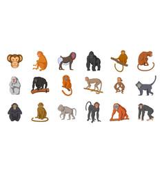 monkey icon set cartoon style vector image