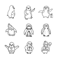 penguin isolated hand drawn vector image