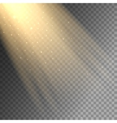 Ray of light on transparent background vector