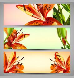 set of floral headers vector image