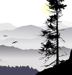 sunrise mountain view flying birds vector image