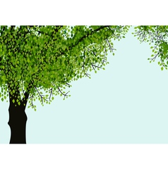Lonely tree vector image vector image