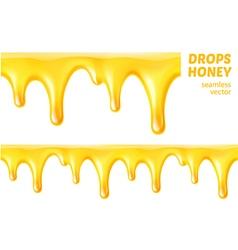 Drops honey Seamless vector image