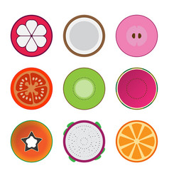isolated mixed fruits vector image