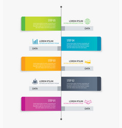 5 rectangle tab timeline infographic options vector