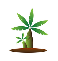 Banana tree cartoon vector