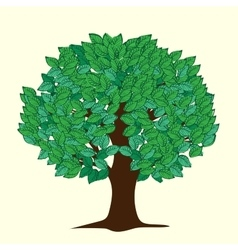 Big tree with green leaves vector image