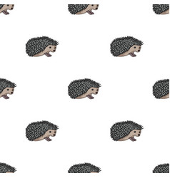 hedgehoganimals single icon in cartoon style vector image