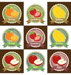 Set of various fresh fruit label badge tag sticker vector image