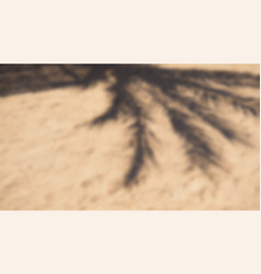 Shadow from palm tree and sun umbrella on sand vector