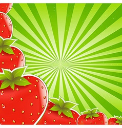Strawberry and green sunburst vector