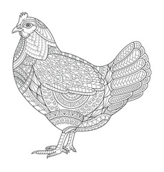 chicken zentangle stylized for coloring book for vector image