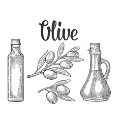 Bottle glass of Olive oil with cork stopper and vector