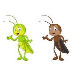 Cartoon cricket presenting collections vector