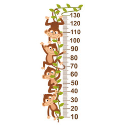 Growth measure with monkey on vine vector