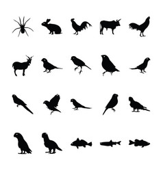 Jungle animal icons collection vector