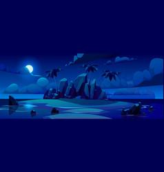night tropical island in ocean vector image